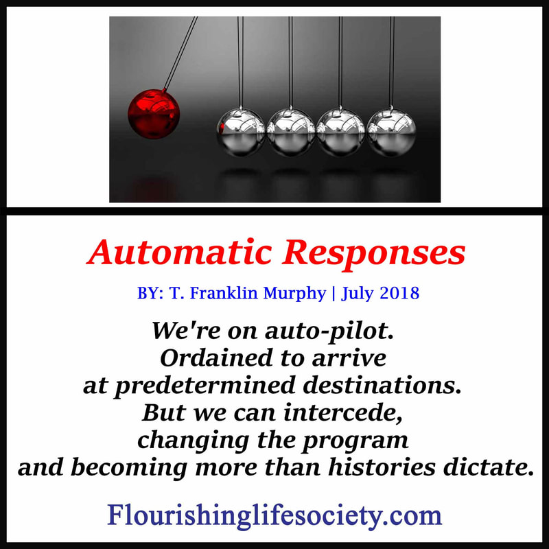 Internal Link: Automatic Responses. We're on auto-pilot. Ordained to arrive at predetermined destinations. But we can intercede, changing the program and becoming more than histories dictate.