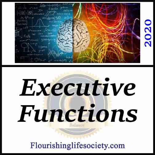FLS internal Link. Executive Functions | Purposeful Wellness. The fabulous brain employs executive functions to process vast flows of information to direct action in service of our wellness goals.