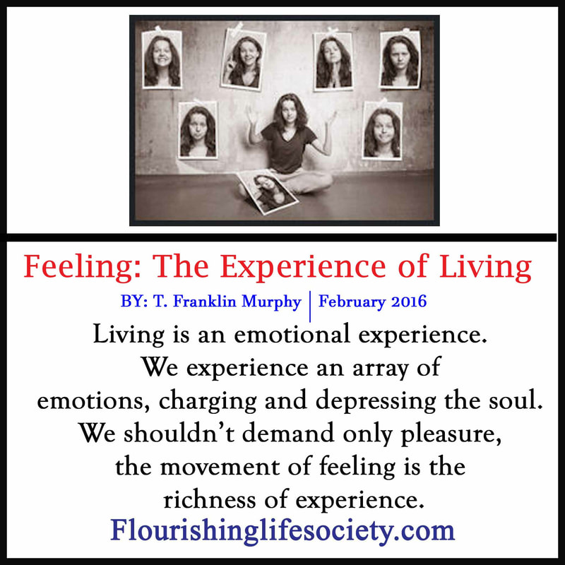 Feeling; The Experience of Liveing