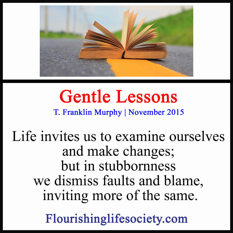 link: Gentle Lessons: Life invites us to examine ourselves and make changes; but in stubbornness we dismiss faults and blame, inviting more of the same.
