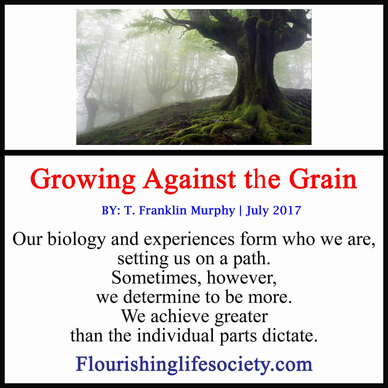 Our biology and experiences form who we are, setting us on a path. Sometimes, however, we determine to be more. We achieve greater than the individual parts dictate.