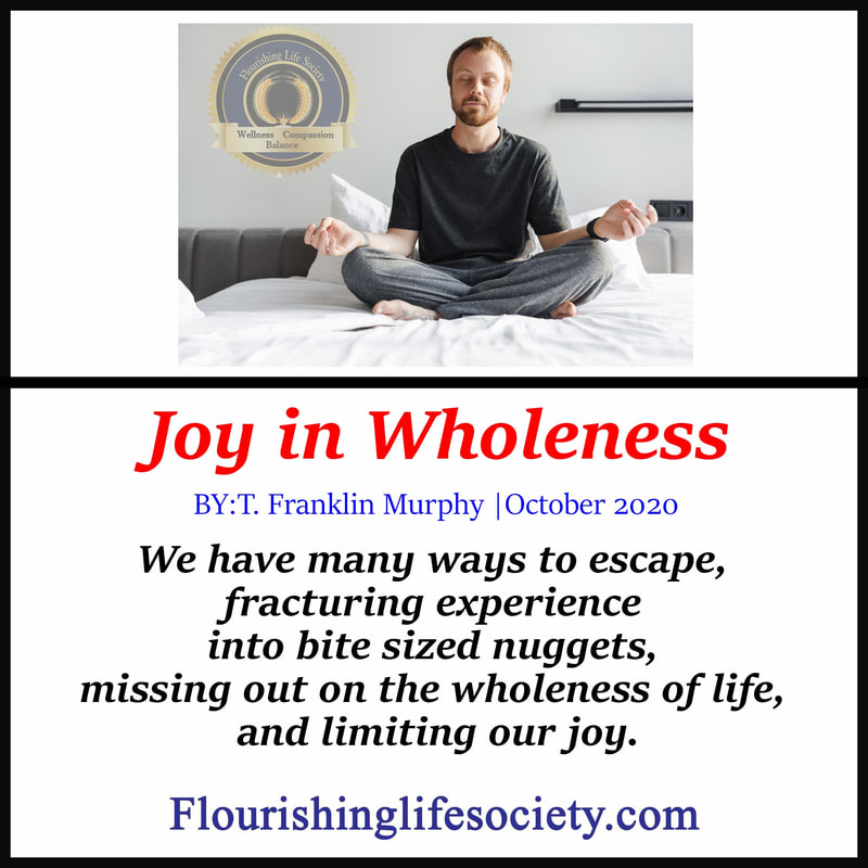 Flourishing Life Society Link. Article. Joy in Wholeness