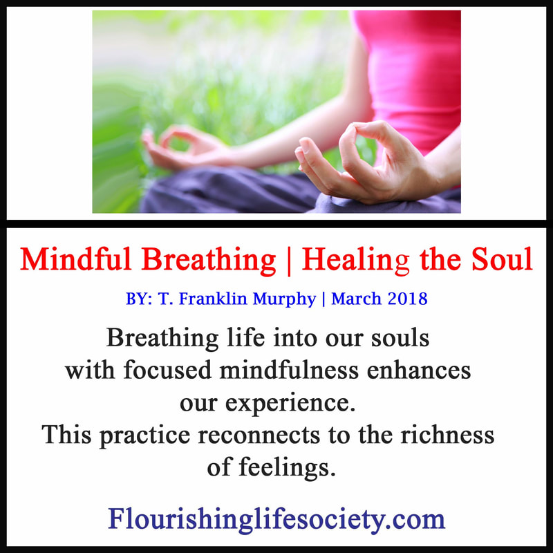 The breathe brings life to the body, feeding the heart and brain. Mindful attention to this life giving process can change our lives.