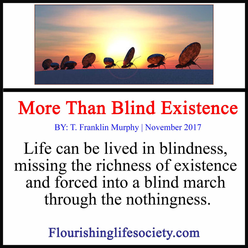 FLS internal link. More than Blind Existence. Life can be lived in blindness, missing the richness of existence and forced into a blind march through the nothingness.