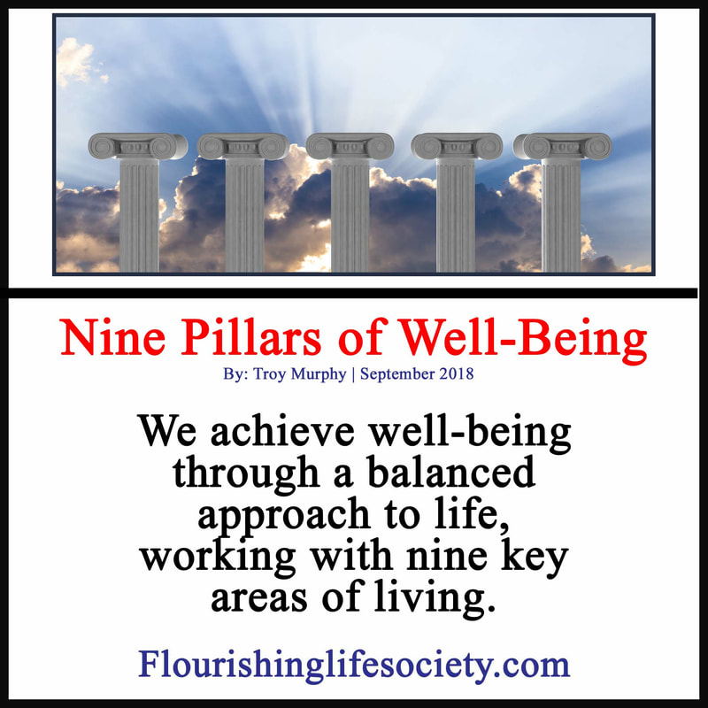 Picture link: Nine Pillars of well being: We achieve well-being through a balanced approach to life, working with nine key areas of living.
