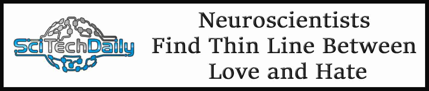 External Link: Neuroscientists Find Thin Line Between Love and Hate
