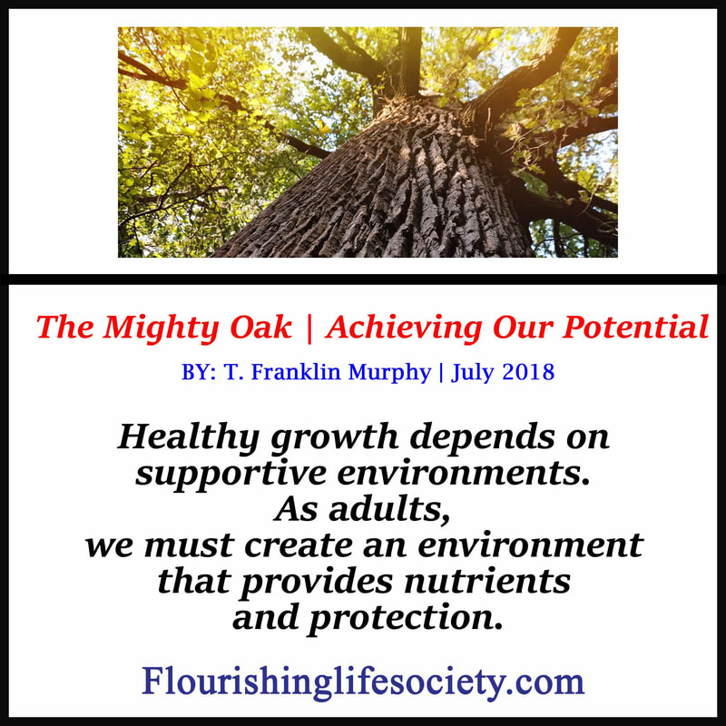 Internal Link: Achieving our potential...Healthy growth depends on supportive environments. As adults, we must create an environment that provides nutrients and protection.