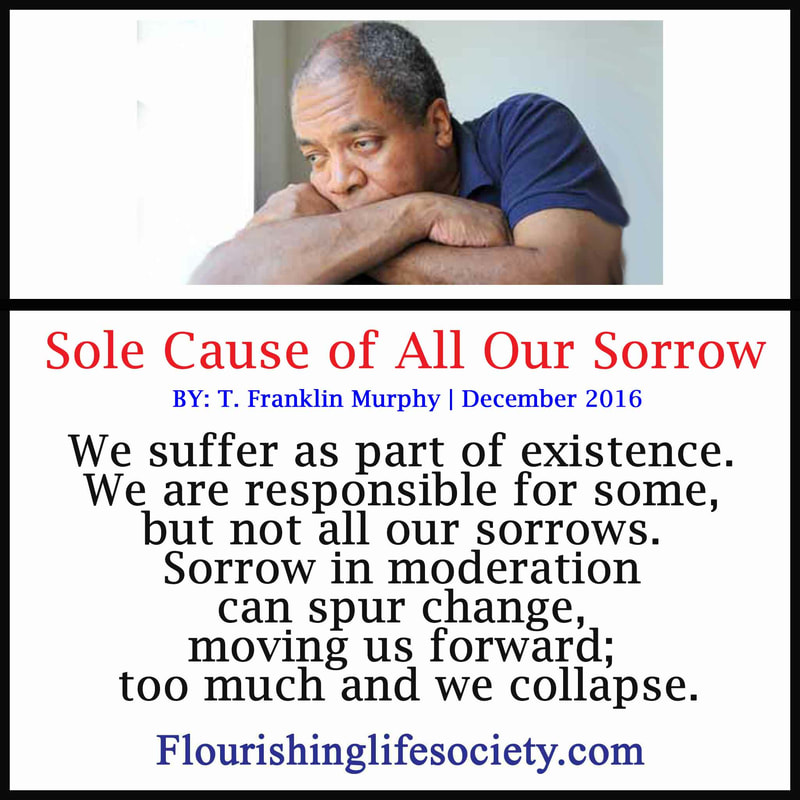 Internal Link: The Sole Cause of Our Sorrow
