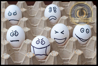 Eggs expressing different emotions. Flourishing Life Society article on emotional regulation.