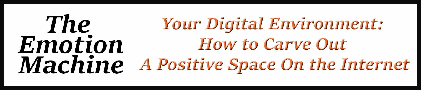 External Link: Your Digital Environment: How to Carve Out A Positive Space On the Internet
